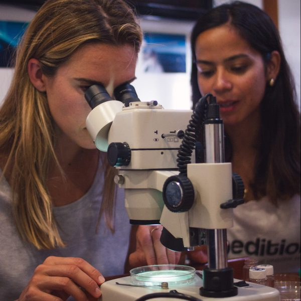 eXXpedition_microplastics_microscope_science